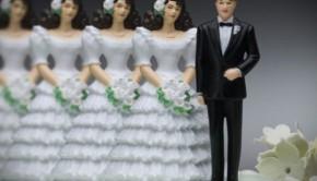 polygamyinprimetimerct-620x412